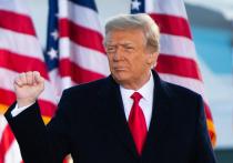 В американском Сенате в ближайшее время, 9 февраля, стартует процесс по второму импичменту Дональду Трампу