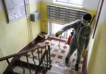 Из-за пандемии коммунальщики забросили уборку домов