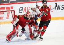 Омский «Авангард» в домашнем матче уверенно переиграл «Нефтехимик»