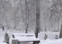 В Хакасии сильный ветер принесет снегопад и потепление