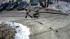 Стая собак набросилась на ребенка в Воронеже: девочку спасли