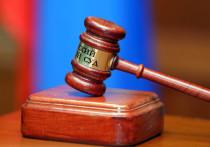 Более 38 миллионов дел и материалов рассмотрели российские суды за время пандемии COVID-19