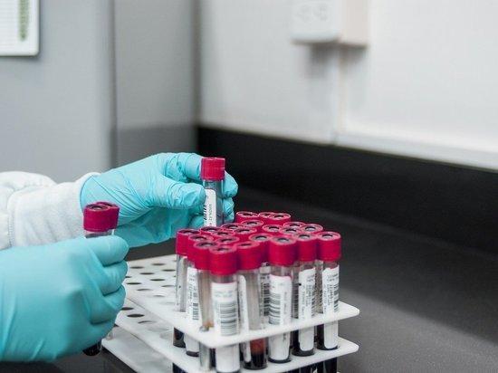 Особые антитела формируются в плаценте