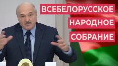 Белорус рассказал о заблуждениях Лукашенко накануне ВНС