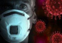 Исследование американских ученых, проведенное на мышах, показало: если легкие освобождаются от коронавируса быстро, то в головном мозге он может задерживаться на неопределенно долгое время