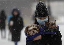 Из-за нового штамма коронавируса в австрийском Тироле вводят беспрецедентные меры безопасности - вплоть до вывода на дороги военных