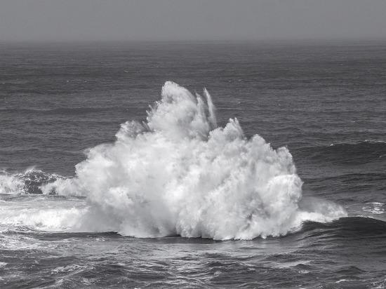 Выяснилось, какой будет война подводных боевых роботов