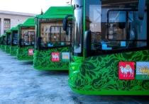 Новый транспорт, который закупается для Челябинска, будет брендирован в едином стиле