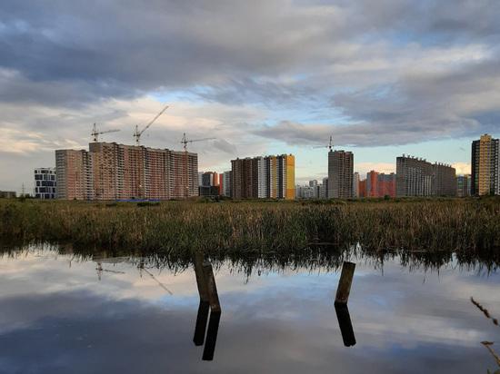 За чертой мегаполиса: будет ли дешеветь недвижимость в Ленобласти