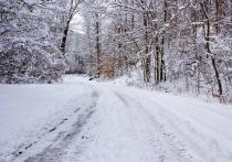 Синоптики рассказали, когда Рязань занесет снегом