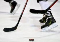 Накануне старта шведского этапа Еврохоккейтура в сборной России обсудили нового тренера