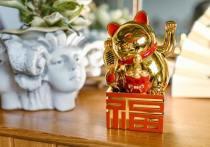 Шаман раскрыл, как разбогатеть в китайский Новый год