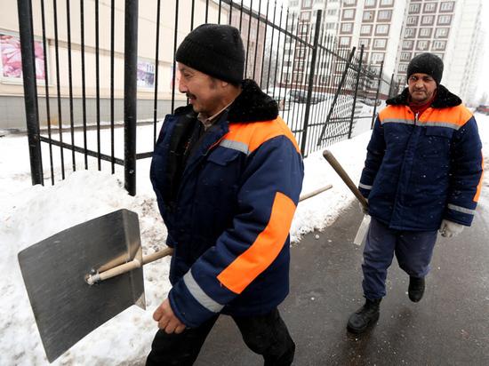 Эксперты оценили нужду России в трудовых мигрантах