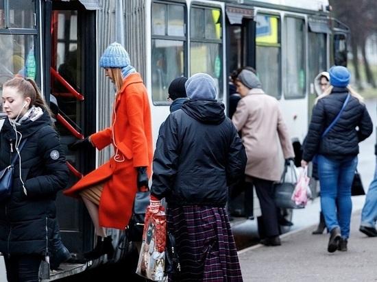 Вот билет на балет, на трамвай билета нет: как псковичи реагируют на запрет высаживать детей-безбилетников