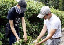 Более семисот рабочих мест для подростков создадут в Серпухове
