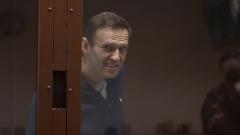 Мимика Навального в суде о клевете: кадры из зала