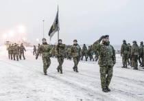 Международный батальон НАТО и эстонская армия провели совместные учения в условиях, близких к российской зиме