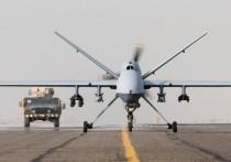 Эксперт объяснил появление смертельных «Жнецов» ВВС США  в Румынии