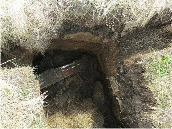 Спустя 80 лет гробокопатели не дают покоя расстрелянным