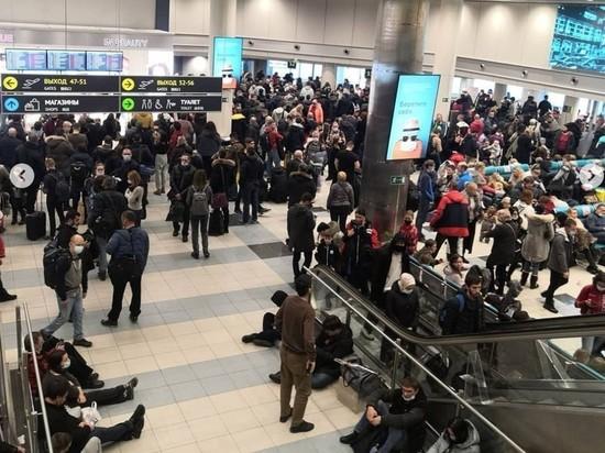 Снежный коллапс в аэропортах Москвы: задержаны больше 130 рейсов