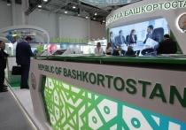 Башкирия начала торговать с Гондурасом, Эквадором, Уругваем и Марокко