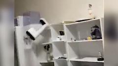 Лампа качается, вся мебель ходуном: кадры землетрясения в Японии