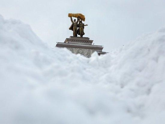 Без помощи москвичей городским службам справиться будет трудно