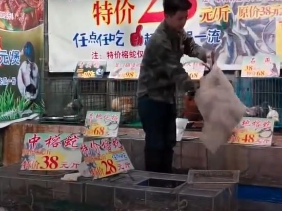 ВОЗ: 13 штаммов коронавируса циркулируют в Китае с октября 2019 года