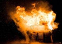 «Что происходит?»: Радий Хабиров возмутился ростом числа погибших при пожарах