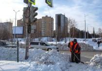 За сутки с рязанских улиц вывезли почти 4,5 тысячи кубометров снега