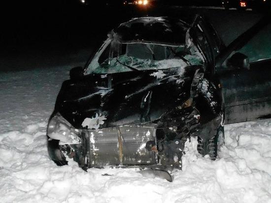 В Удмуртии водитель легкового авто пострадал при столкновении с лосем
