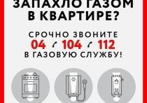 Жителям Московской области напомнили правила обращения с бытовым газом