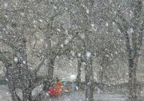 Борис Кубай сказал, чего ждать от погоды на праздники