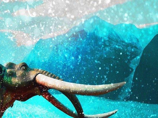 Причиной вымирания мегафауны в Америке стали изменения климата
