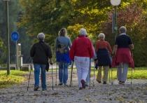 В Карелии набирают курс инструкторов скандинавской ходьбы