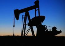 Что такое цифровой керн? Как извлечь из-под земли трудноизвлекаемые запасы нефти? Как заставить арктические бактерии очищать места разливов углеводородов? Об этом и многом другом рассказали во вторник журналистам представители научных департаментов «Роснефти», подводя итоги прошедшего 2020 года и обозначая новые пути развития