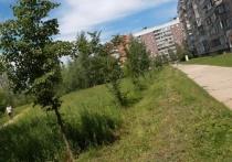 Новосибирская мэрия продала землю в Академгородке, где хотели сделать сквер