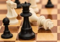 Серпуховичка стала призером Кубка городского округа Пущино по шахматам