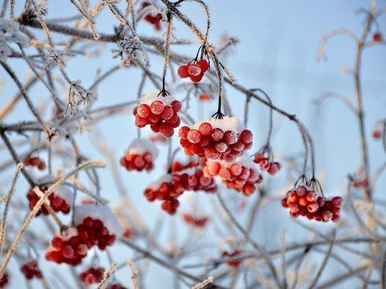В Удмуртии 17 февраля будет морозно и облачно, но без осадков
