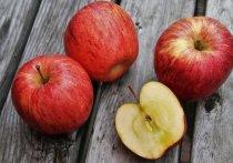 18 тонн яблок задержали на границе Псковской области