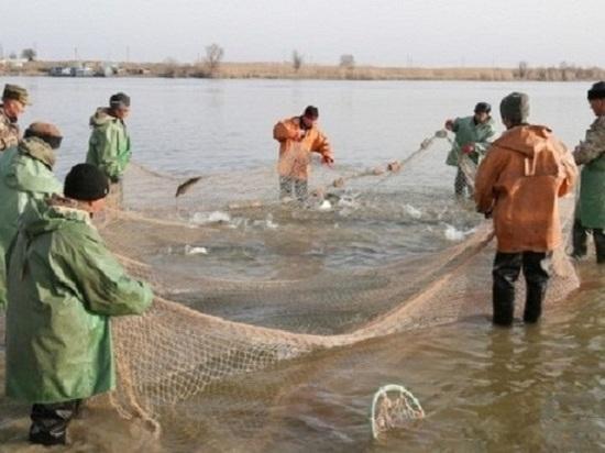 Рыболовецкие хозяйства Калмыкии приступили к весенней путине