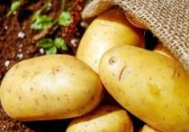 Картофель и морковь за год подорожали в рознице более чем на треть