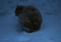 В Астрахани аномальный снегопад стал причиной огромного количества ДТП