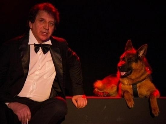 В волгоградском Казачьем театре к работе на сцене приступил пес