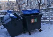В Петрозаводске с нового мусорного евроконтейнера скрутили колёса