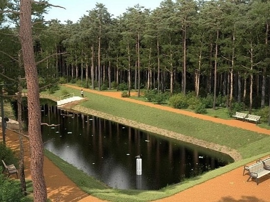 Администрация Ижевска приводит в соответствие с федеральным законом нормативные акты об использовании городских лесов