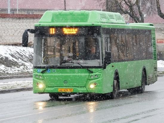 Безработная псковичка обокрала в автобусе пенсионерку