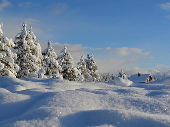В выходные в Марий Эл сохранится аномально холодная погода