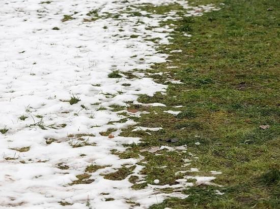 Небольшое потепление ожидается в Псковской области 20 февраля