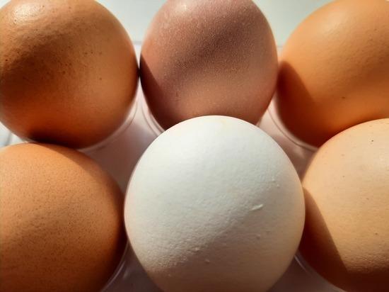 Саратовцев ожидает очередное  повышение цен на яйца и курятину